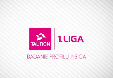 Badanie profilu kibica Polskiej Ligi Siatkówki.